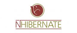 NHibernate logo