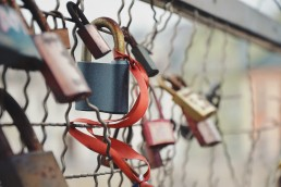 Locks on a fence